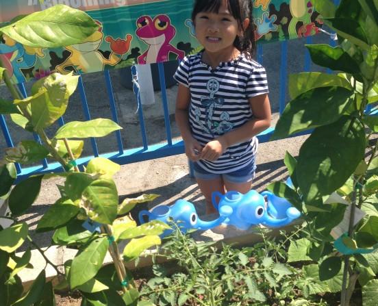 Gardening at our preschool
